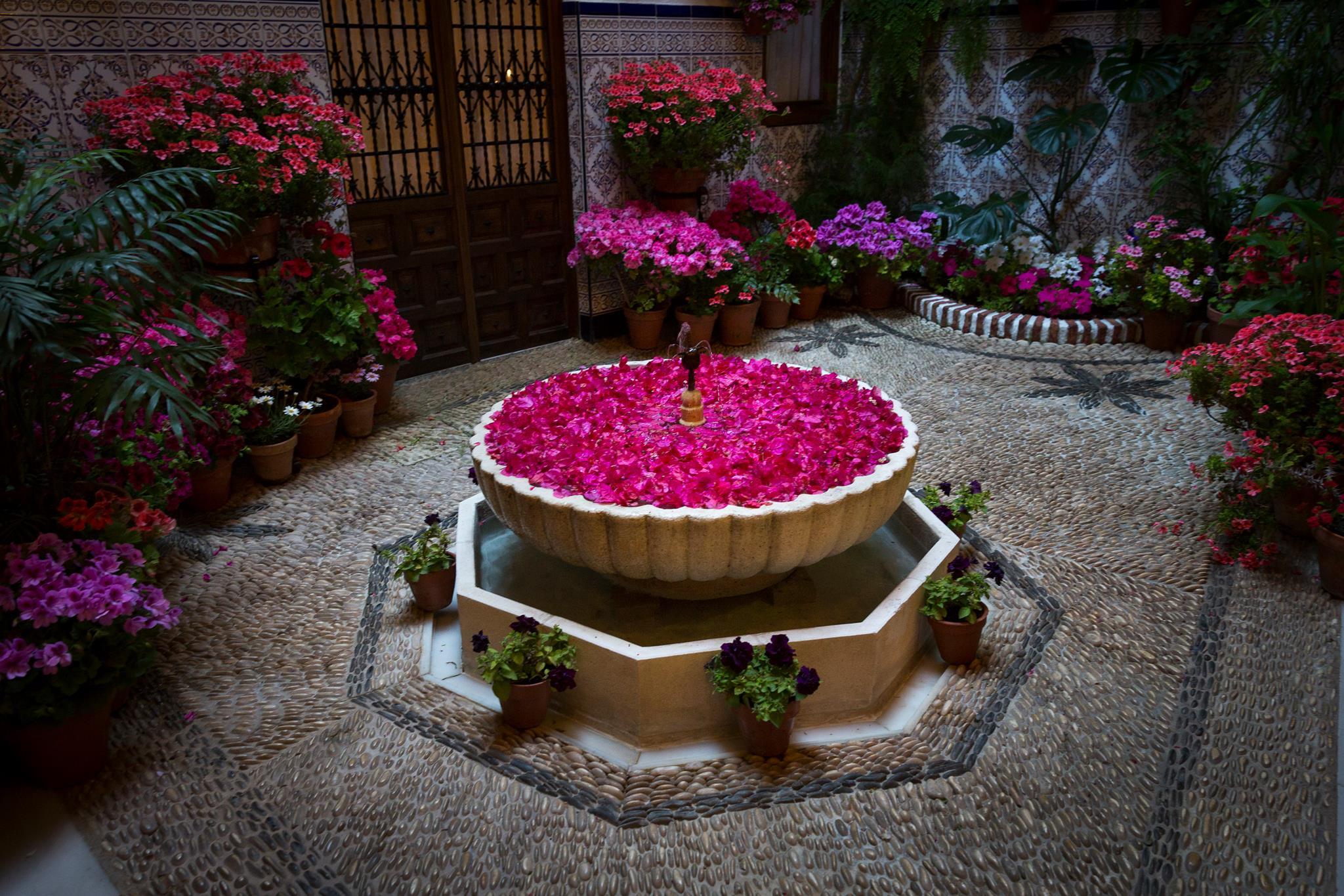 Mayo es el mes del color y la alegr a de los patios de c rdoba for El jardin de la alegria cordoba