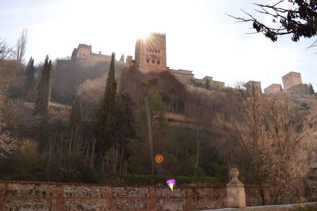 Baños Arabes Aljibe Granada:La sabiduría oculta en el jardín botánico andalusí – Blog de los